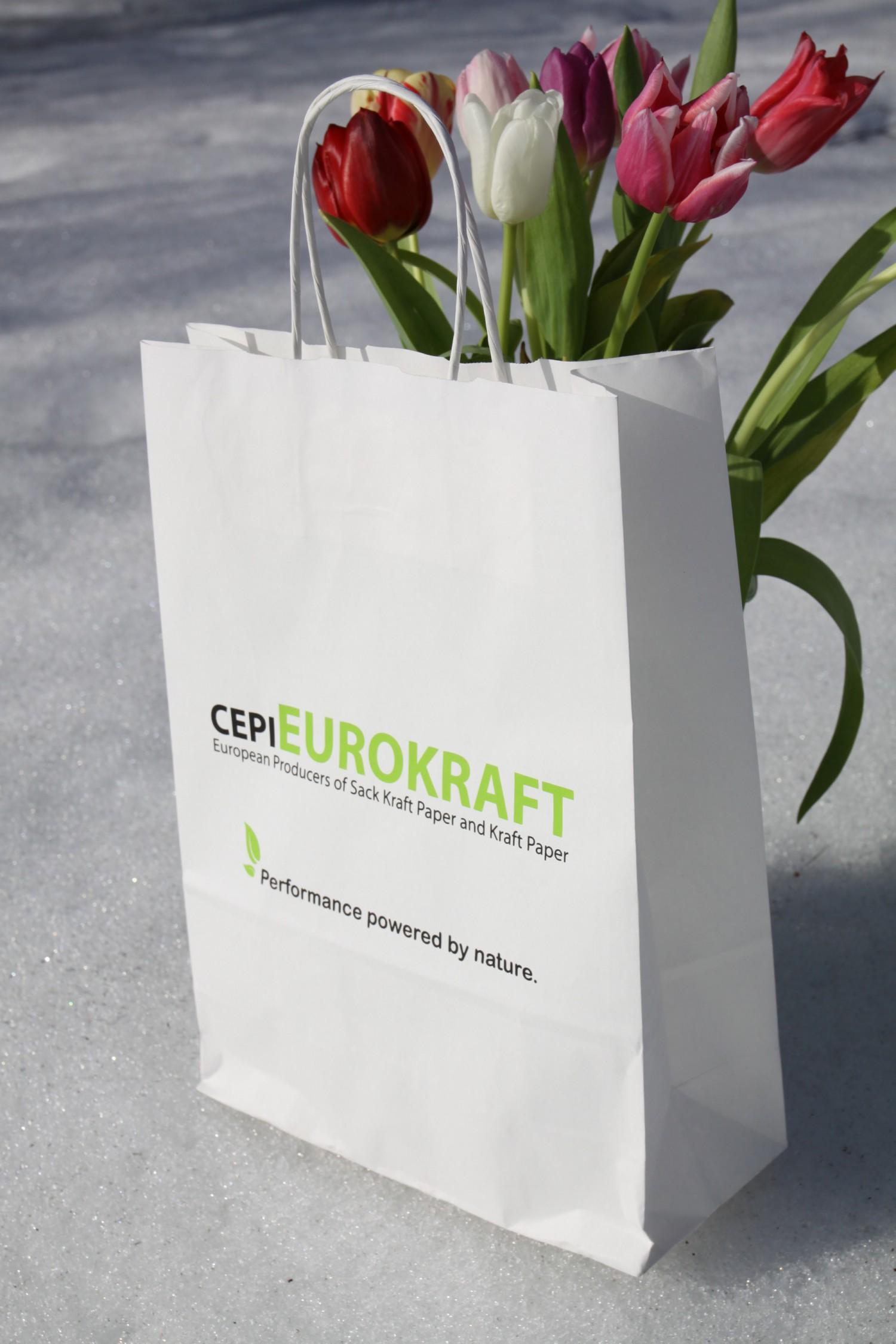 Tragetaschen aus Papier – der Umwelt zuliebe